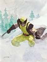 Wolverine by Esad Ribic Comic Art